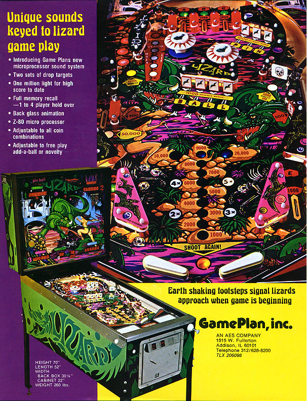 Game Plan Lizard Flyer